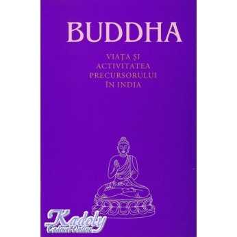 Buddha - Viata si activitatea Precursorului in India