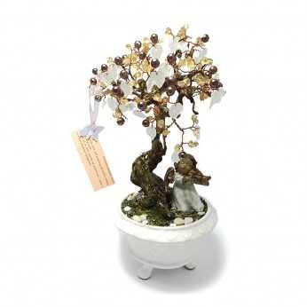 Bonsai pentru zodia Rac