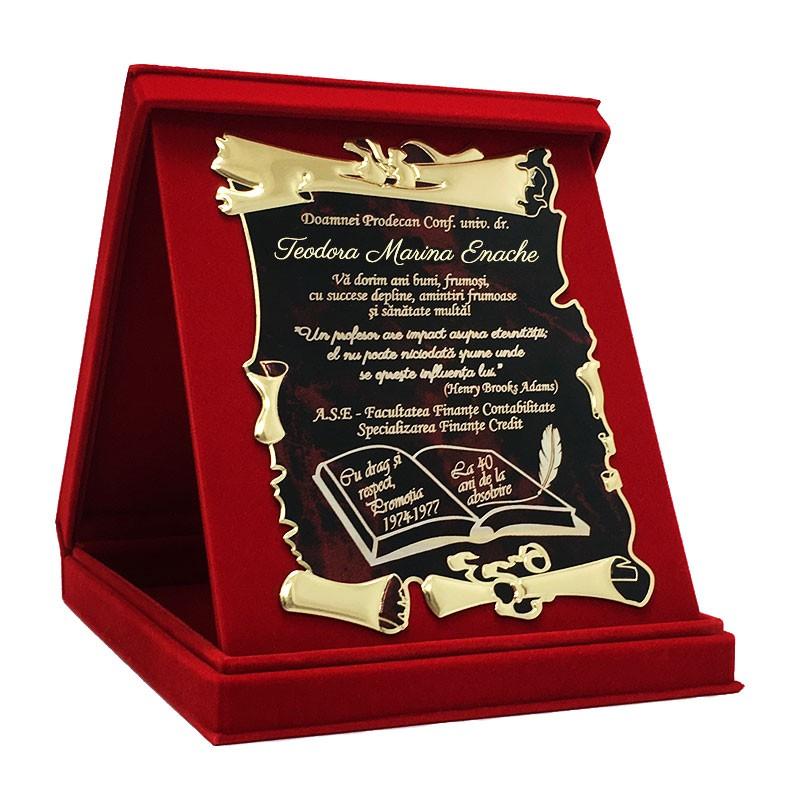 Cadou pentru intalnirea aniversara a omului Caut un om Ukulele